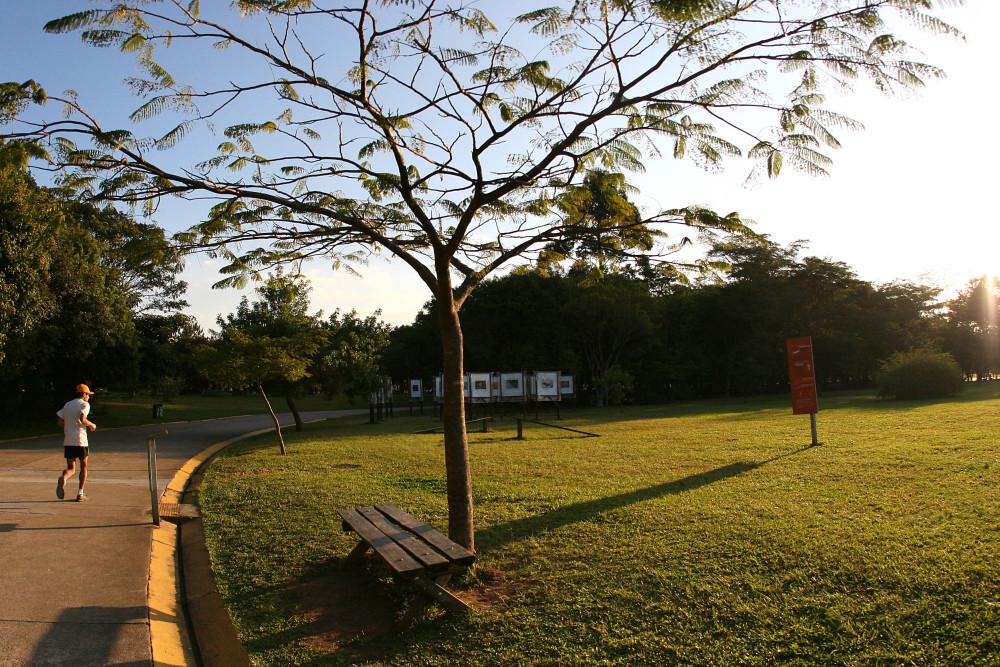 PARQUE VILLA LOBOS - SÃO PAULO (SP) – 18.06.2009 - GERAL – PARQUE VILLA LOBOS POSSUI CICLOVIAS, CAMPO DE FUTEBOL, BOSQUE, APARELHOS DE GINÁSTICA, ANFITEATRO, ENTRE OUTRAS. - FOTO: CAIO PIMENTA/SPTURIS.