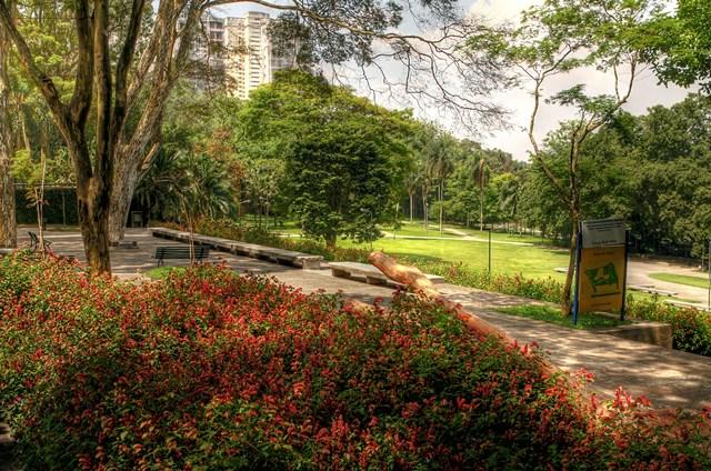 Parquel Burle Marx. Foto> Caio Pimenta/SPTUris
