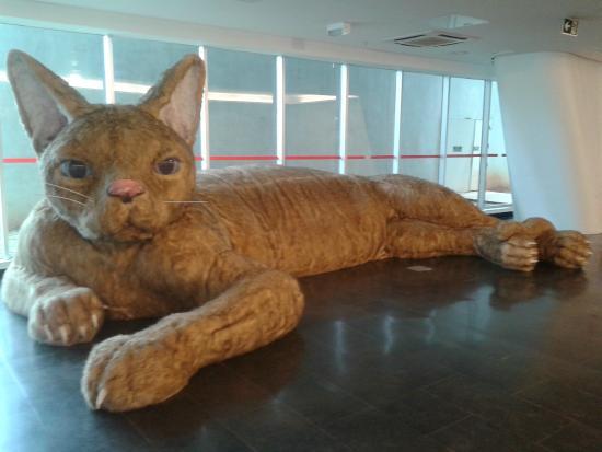 MAC USP: Conheça um dos Principais Centros de Arte do Hemisfério Sul