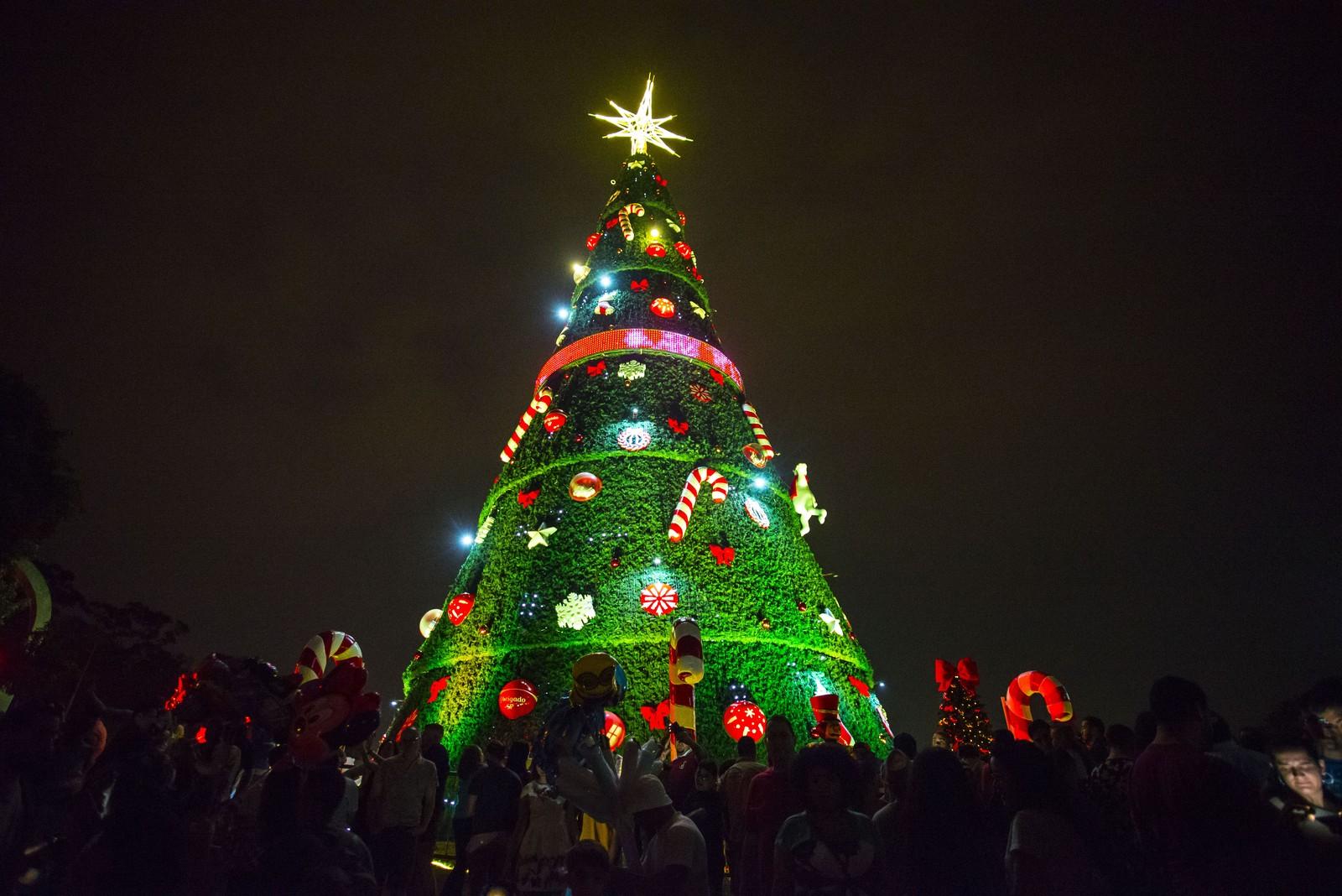 Árvore de Natal é inaugurada no Parque do Ibirapuera