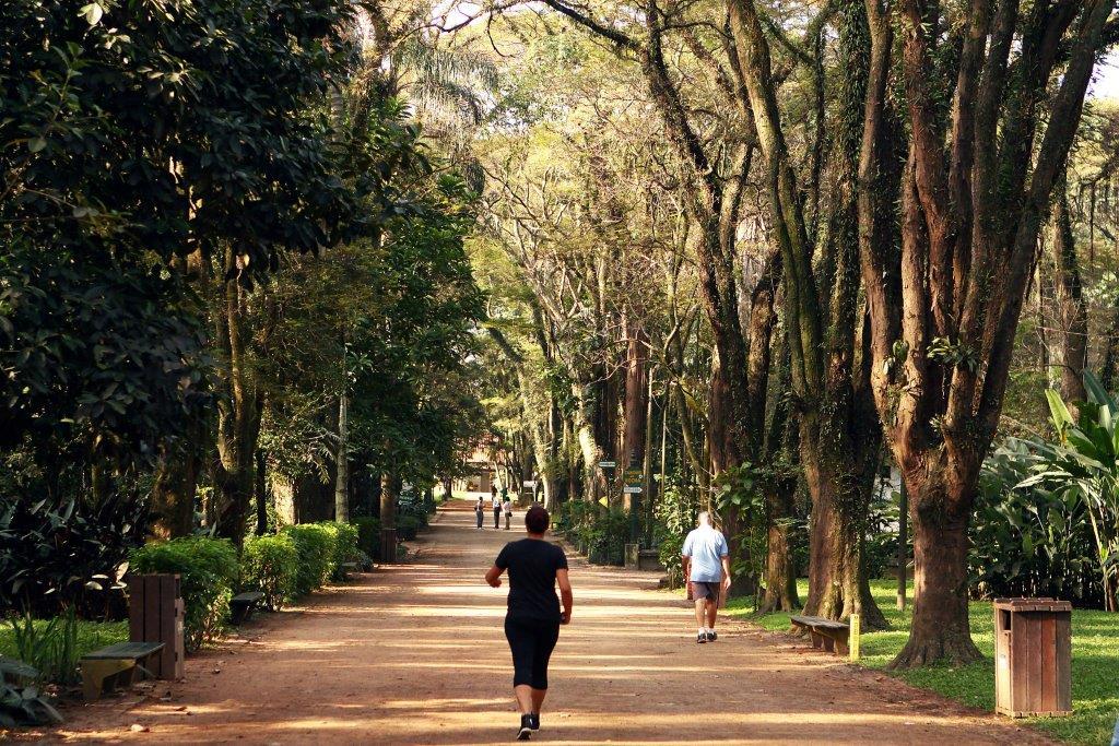 Parque do Piqueri Foto Caio PImenta